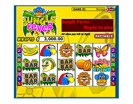 bingo cabin jungle fever 5 reel online slots game